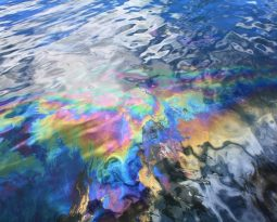 Oil and Water; Politics and Economics